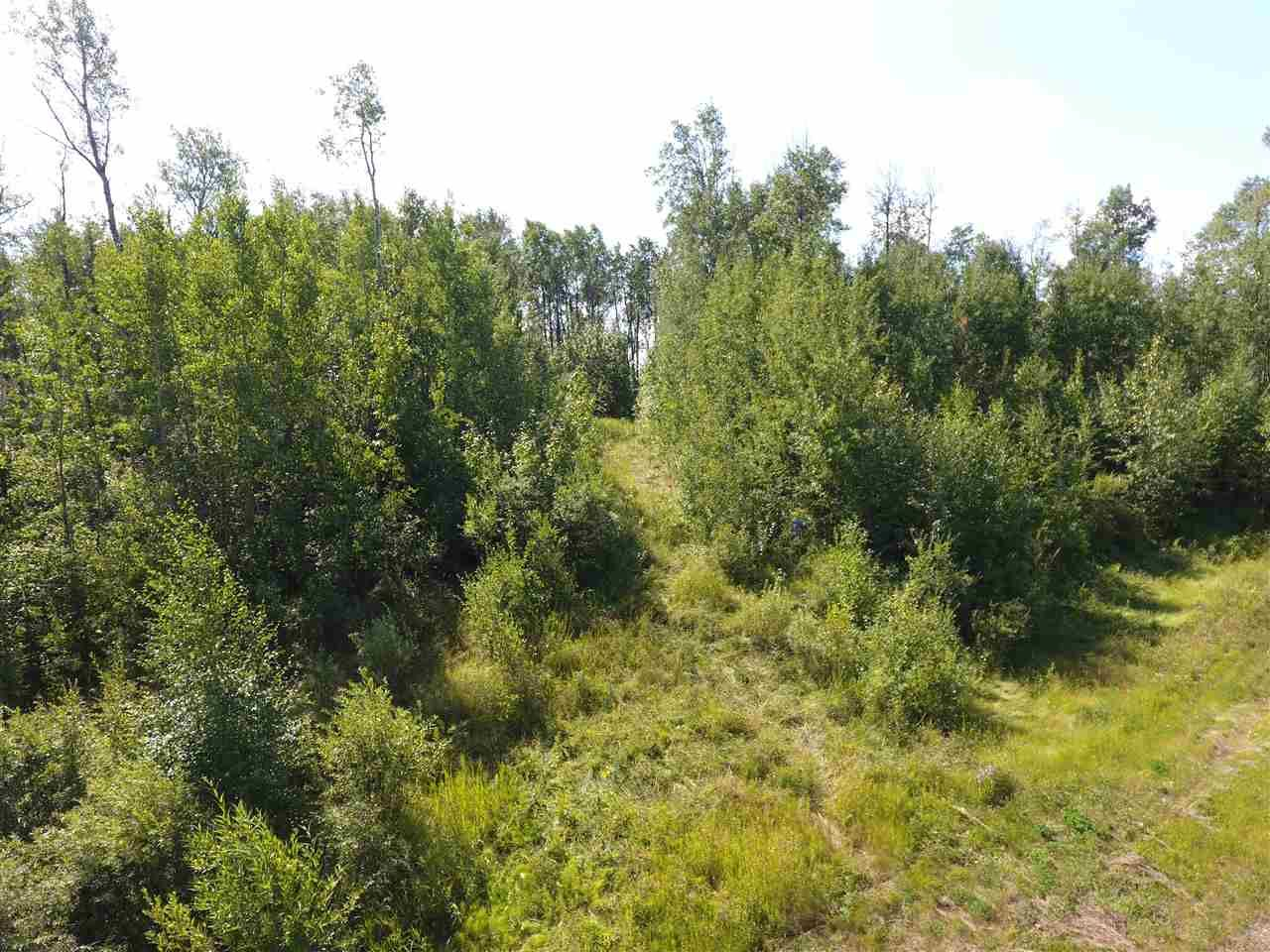 Photo 5: Photos: 22 Morgan Way: Rural Lac Ste. Anne County Rural Land/Vacant Lot for sale : MLS®# E4209833