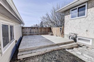 Photo 32: 126 Dovercliffe Way SE in Calgary: Dover Detached for sale : MLS®# A1082276