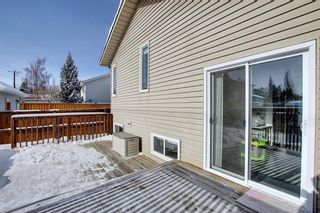 Photo 45: 119 Shawinigan Drive SW in Calgary: Shawnessy Detached for sale : MLS®# A1068163