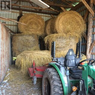 Photo 14: 16454 Highway 540 in Evansville: Agriculture for sale : MLS®# 2092616