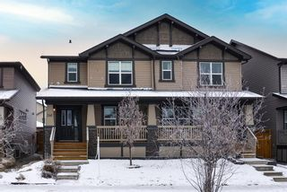 Photo 1: 246 Skyview Ranch Boulevard NE in Calgary: Skyview Ranch Semi Detached for sale : MLS®# A1052771