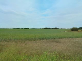 Photo 2: : Rural Beaver County Rural Land/Vacant Lot for sale : MLS®# E4239437