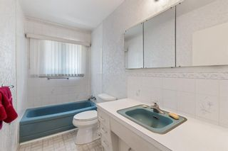 Photo 19: 2328 58 Avenue SW in Calgary: North Glenmore Park Detached for sale : MLS®# A1130448