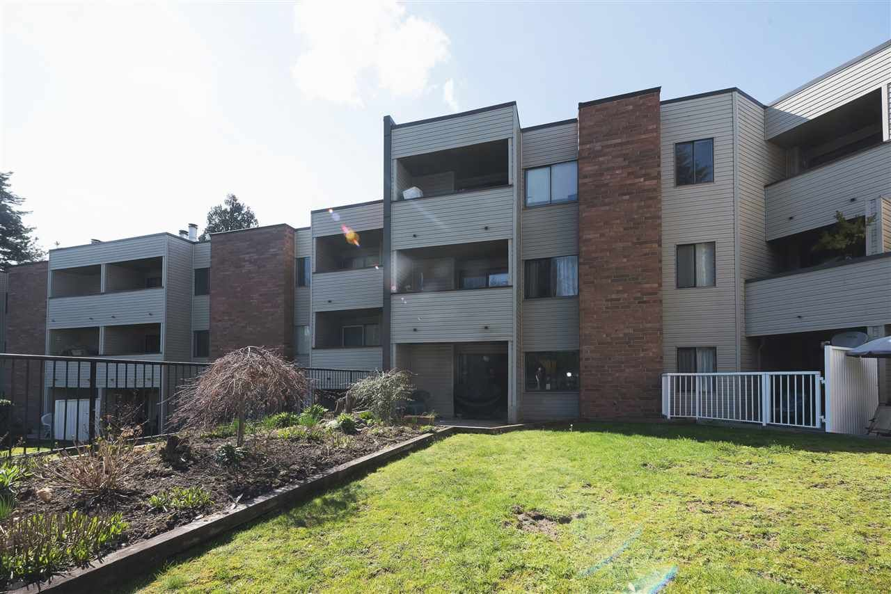"Main Photo: 107 615 NORTH Road in Coquitlam: Coquitlam West Condo for sale in ""NORFOLK MANOR"" : MLS®# R2152631"