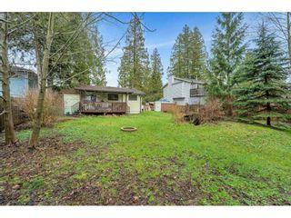 Photo 31: 24944 122 AVENUE in Maple Ridge: Websters Corners House for sale : MLS®# R2559311