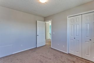 Photo 22: 126 Tanner Close: Airdrie Detached for sale : MLS®# A1103980