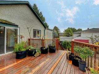 Photo 18: 3060 Albina St in Saanich: SW Gorge House for sale (Saanich West)  : MLS®# 860650