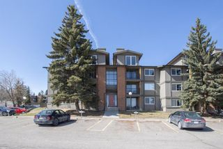 Main Photo: 333 6400 coach hill Road in Calgary: Coach Hill Apartment for sale : MLS®# A1089415