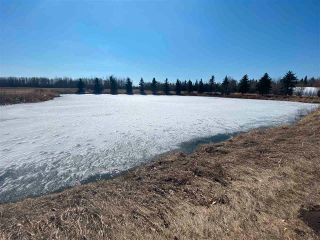 Photo 3: 46, 27118 HWY 18: Rural Westlock County Rural Land/Vacant Lot for sale : MLS®# E4238085