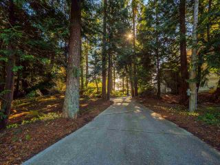 "Photo 12: 7101 DALE Road in Sechelt: Sechelt District House for sale in ""Caleda Estates"" (Sunshine Coast)  : MLS®# R2515160"