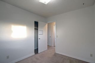 Photo 24: 37 Martingrove Way NE in Calgary: Martindale Detached for sale : MLS®# A1152102