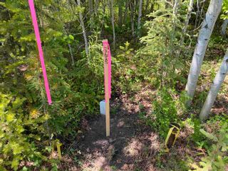 """Photo 7: LOT 7 S SOMERSET Drive: Cluculz Lake Land for sale in """"SOMERSET ESTATES"""" (PG Rural West (Zone 77))  : MLS®# R2596563"""