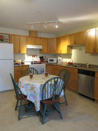 Photo 5: 203 4703 43 Avenue: Stony Plain Condo for sale : MLS®# E4256465