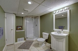 Photo 30: 3212 14 Street SW in Calgary: Upper Mount Royal Detached for sale : MLS®# A1127945