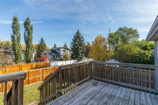 Photo 33: 53 Shawinigan Road SW in Calgary: Shawnessy Detached for sale : MLS®# A1148346