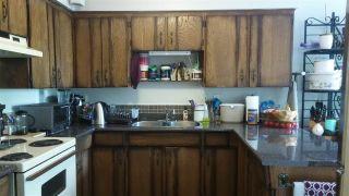 Photo 12: 10531 - 10551 ANAHIM Drive in Richmond: McNair Duplex for sale : MLS®# R2194316
