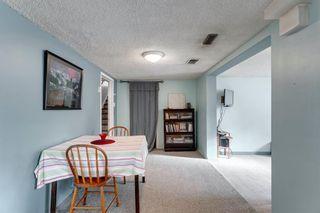 Photo 29: 855 13 Avenue NE in Calgary: Renfrew Detached for sale : MLS®# A1064139