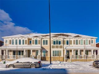 Photo 26: 10706 CITYSCAPE Drive NE in Calgary: Cityscape House for sale : MLS®# C4093905