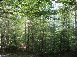 Photo 2: 9A Thornhill Drive in Spryfield: 7-Spryfield Vacant Land for sale (Halifax-Dartmouth)  : MLS®# 202124316
