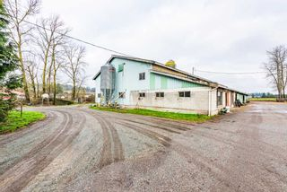 """Photo 4: 21377 CRUSH Crescent in Langley: Willoughby Heights House for sale in """"Milner Farmland"""" : MLS®# R2424924"""