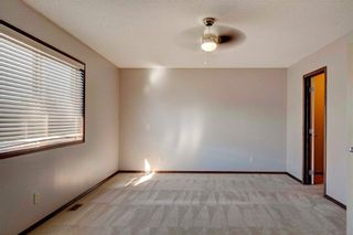 Photo 18: 279 CHAPALINA Terrace SE in Calgary: Chaparral House for sale : MLS®# C4128553