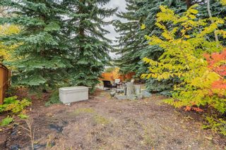 Photo 39: 2836 12 Avenue NW in Calgary: St Andrews Heights Detached for sale : MLS®# A1093477