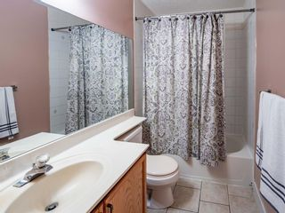 Photo 17: 216 Coral Springs Mews NE in Calgary: Coral Springs Detached for sale : MLS®# A1117800