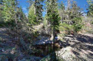 Photo 39: 6787 East Sooke Rd in : Sk East Sooke Land for sale (Sooke)  : MLS®# 872060