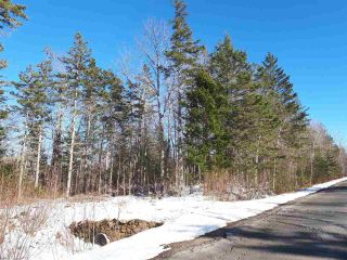 Photo 6: LOT Stronach Mountain Road in Forest Glade: 400-Annapolis County Vacant Land for sale (Annapolis Valley)  : MLS®# 201924165