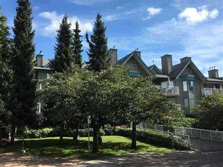 """Photo 1: 116 15150 108 Avenue in Surrey: Guildford Condo for sale in """"Riverpointe"""" (North Surrey)  : MLS®# R2351537"""