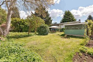 Photo 27: 13665 111A Avenue in Surrey: Bolivar Heights House for sale (North Surrey)  : MLS®# R2575005
