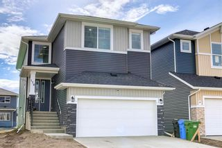 Main Photo: 176 Red Embers Place in Calgary: Redstone Detached for sale : MLS®# A1150565