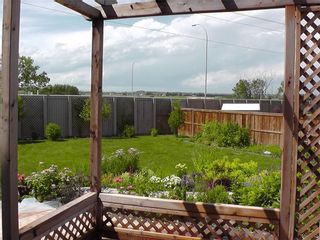 Photo 41: 155 CHAPALINA Mews SE in Calgary: Chaparral Detached for sale : MLS®# C4247438