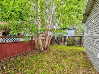 Photo 32: 69 3223 83 Street NW in Calgary: Greenwood/Greenbriar Mobile for sale : MLS®# A1133242