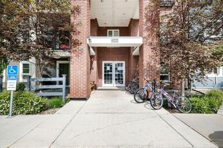Photo 1: 2306 279 COPPERPOND Common SE in Calgary: Copperfield Apartment for sale : MLS®# C4305193