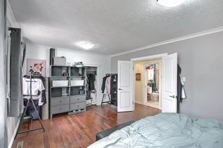Photo 14: 4328 70 Street NW in Calgary: Bowness Detached for sale : MLS®# A1093003