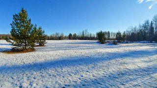 """Photo 6: LOT 1 SMAASLET Road in Prince George: Beaverley Land for sale in """"BEAVERLEY"""" (PG Rural West (Zone 77))  : MLS®# R2323246"""
