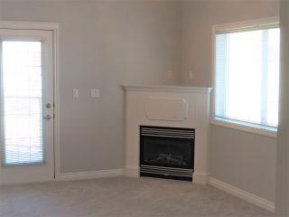 Photo 15: 313 10116 80 Avenue in Edmonton: Zone 17 Condo for sale : MLS®# E4229427