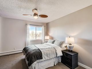 Photo 14: 412A 4455 Greenview Drive NE in Calgary: Greenview Apartment for sale : MLS®# A1101294