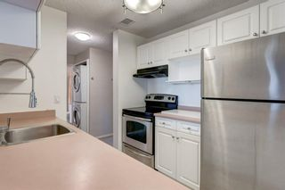 Photo 11: 208 540 18 Avenue SW in Calgary: Cliff Bungalow Apartment for sale : MLS®# A1046007