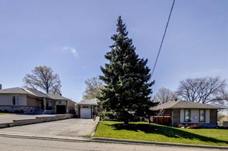Photo 25: 47 Deevale Road in Toronto: Downsview-Roding-CFB House (Bungalow) for sale (Toronto W05)  : MLS®# W4458656