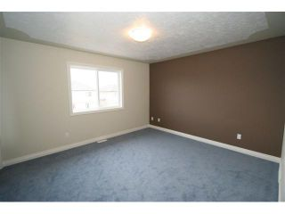 Photo 11: 300 SADDLEMEAD Close NE in CALGARY: Saddleridge Residential Detached Single Family for sale (Calgary)  : MLS®# C3500117