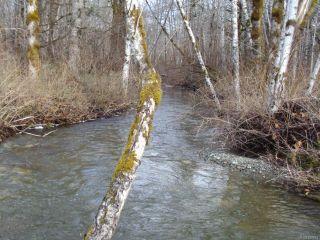 Photo 23: 3424 LODGE DRIVE in BLACK CREEK: CV Merville Black Creek Land for sale (Comox Valley)  : MLS®# 826884