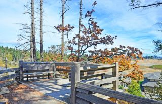 Photo 35: 300 591 Latoria Rd in : Co Olympic View Condo for sale (Colwood)  : MLS®# 875313