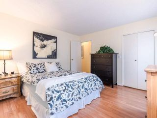 """Photo 13: 6774 197 Street in Langley: Willoughby Heights House for sale in """"Langley Meadows"""" : MLS®# R2583199"""