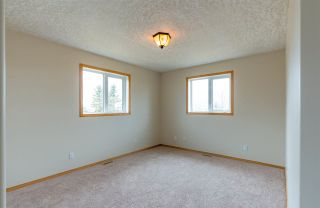 Photo 19: 455033A Rge Rd 235: Rural Wetaskiwin County House for sale : MLS®# E4240148