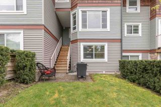 Photo 20: 36 23651 132 AVENUE in Maple Ridge: Silver Valley Townhouse for sale : MLS®# R2571884