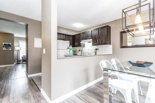 Photo 11: 132 Pineland Place NE in Calgary: Pineridge Detached for sale : MLS®# A1110576