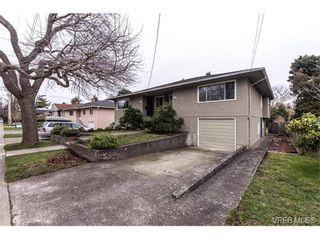 Photo 18: 1607 Chandler Ave in VICTORIA: Vi Fairfield East Half Duplex for sale (Victoria)  : MLS®# 753476