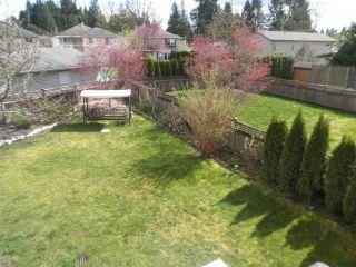 Photo 18: 11514 DARTFORD Street in Maple Ridge: Southwest Maple Ridge House for sale : MLS®# V1114213